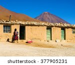 Small photo of Life on Altiplano