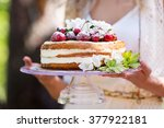 woman holding a naked cake | Shutterstock . vector #377922181