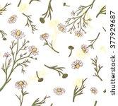 vector herbal background with... | Shutterstock .eps vector #377929687
