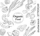 organic food banner. fresh... | Shutterstock .eps vector #377959249