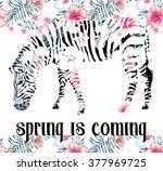 zebra floral  print | Shutterstock .eps vector #377969725
