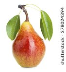 pear with leaves isolated on a...   Shutterstock . vector #378024394