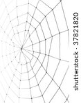 spider web for background use   Shutterstock . vector #37821820