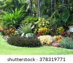 Tropical Landscaping  Foliage ...