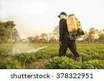 Farmer spraying pesticide during sunset time - stock photo