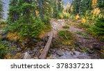 A Log Across A Stream. Trail I...