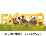 easter  three easter bunnies...   Shutterstock . vector #378349237