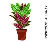 houseplant  codiaeum variegatum | Shutterstock .eps vector #378407551