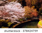 cherry blossoms in kyoto  japan. | Shutterstock . vector #378424759