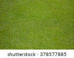 Green Golf Green   Close Up