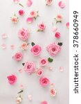 roses and petals background.... | Shutterstock . vector #378660949