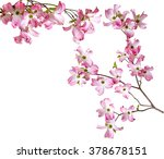 spring  branch with flowers | Shutterstock . vector #378678151