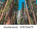 The Frozen Yosemite Falls In...