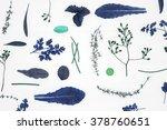 assortment of fresh herbs thyme ... | Shutterstock . vector #378760651