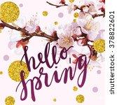 """hello  spring"" hand written... | Shutterstock .eps vector #378822601"