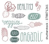 eco hand drawn lettering and... | Shutterstock .eps vector #378871261