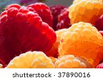 Golden And Red Raspberries ...