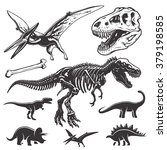 Set Of Monochrome Dinosaurs....