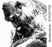 monkey | Shutterstock .eps vector #379297705