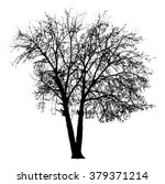 tree silhouette on white... | Shutterstock .eps vector #379371214