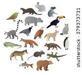 vector image of wild animals   Shutterstock .eps vector #379373731