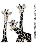 trendy african animals vector... | Shutterstock .eps vector #379377724