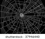 web | Shutterstock .eps vector #37946440