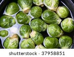 Brussels sprouts in water - stock photo