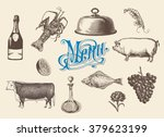 hand drawn vintage sketch set... | Shutterstock .eps vector #379623199