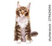 Maine Coon Kitten Watercolor...