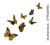 Vector Butterfly With Hearts O...
