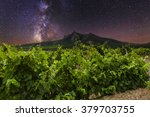 Vineyards And Mountains On The...