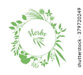 fresh herbs store emblem. green ... | Shutterstock .eps vector #379720249