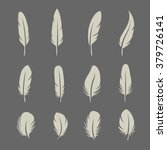 Feathers Set On Dark Background