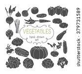 hand drawing vegetables set.... | Shutterstock .eps vector #379731589