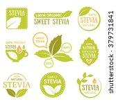 Vector Set Of Stevia Labels ...