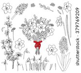 spring flowers   vector hand...   Shutterstock .eps vector #379769209