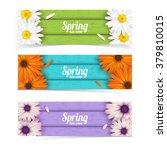 bright spring banners design.... | Shutterstock .eps vector #379810015
