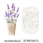 lavender sign label | Shutterstock .eps vector #379870471