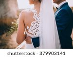 wedding couple in a beautiful... | Shutterstock . vector #379903141