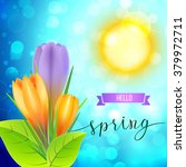 spring greeting card with... | Shutterstock .eps vector #379972711
