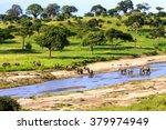 Elephants Crossing  The River...
