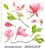 spring collection of blooming... | Shutterstock .eps vector #380052439