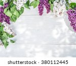 Blooming Lilac Flowers On The...