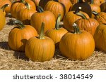 Pumpkins Of Different Sizes ...