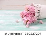 fresh pink hyacinths flowers on ... | Shutterstock . vector #380227207