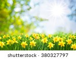 spring easter background with... | Shutterstock . vector #380327797