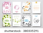 set of brochure  poster design... | Shutterstock .eps vector #380335291