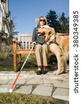 blind woman with a guide dog | Shutterstock . vector #380349385