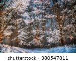 Hoarfrost   Canvas Oil Paintin...